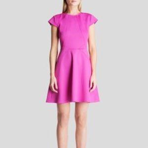 Ted Baker London Dresses & Skirts - Ted Baker Fuchsia Eebrr Skater Dress sz 0 = 2