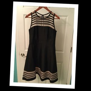 Taylor Dresses & Skirts - Perfect Dress!!