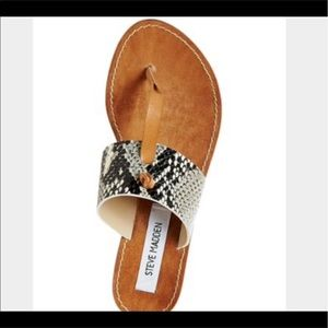 Steve Madden Shoes - ♣️NEW♣️ Steve Madden Olivia Sandals