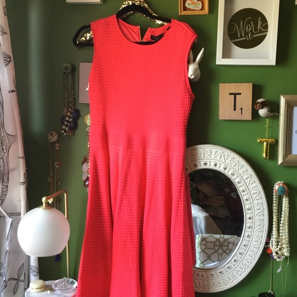 Ted Baker Dresses - BNWT!  Ted Baker Orange Ottoman Dress