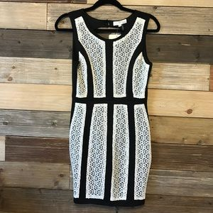 INA Dresses & Skirts - NWT Open Back Dress