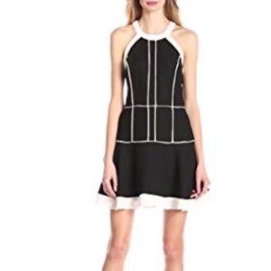 Parker Dresses & Skirts - Parker Fit and Flare Mini Dress