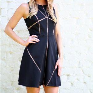 C. Luce Dresses & Skirts - Black Mesh Cut-Out Dress