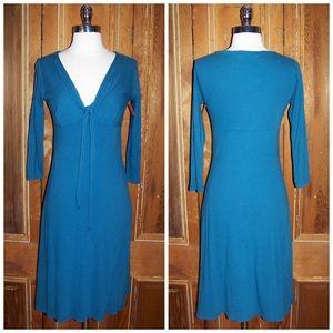 Velvet Dresses & Skirts - Velvet by Robert Graham Malina Dress in Tidalwave
