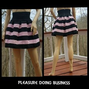 Pleasure Doing Business Dresses & Skirts - 💠SALE💠PLEASURE DOING BUSINESS Embroidered Skirt