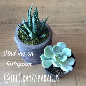 Other - Instagram @theGrayAsparagus