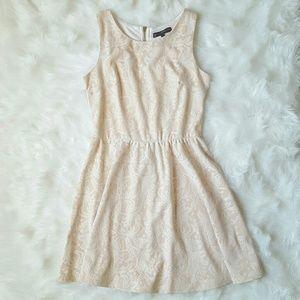 Dresses & Skirts - Blush Lace Dress