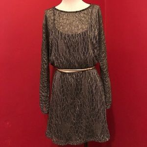 Mesh Gold and Black Dress