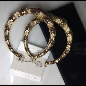 Farah Jewelry Jewelry - 14K GF Pinsatch bamboo gold earrings