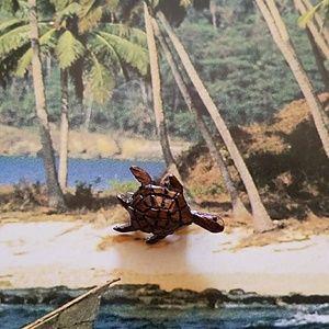 Help The Sea Turtle!