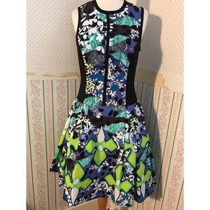 Target Peter Pilotto Dress