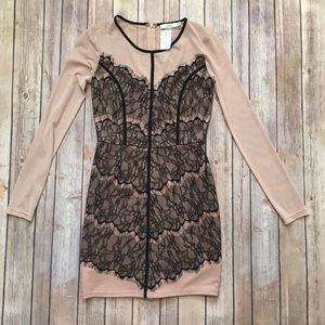 NWT lace and mesh dress