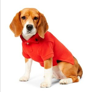 Polo by Ralph Lauren Other - COTTON MESH DOG POLO