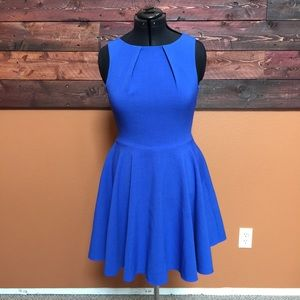 Dresses & Skirts - Francesca's boutique fit and flare dress