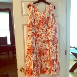Poppy & Bloom dress plus size 24