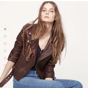 Maje Jackets & Blazers - BNWT Maje blouson style biker leather jacket, US6