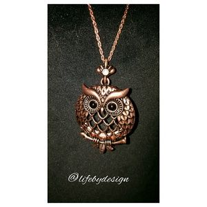 Lucky You Jewelry - Owl Necklace with Magnifying Glass