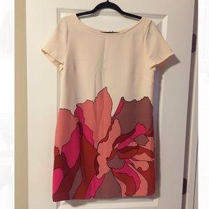 EUC Ann Taylor LOFT Floral Shift Dress
