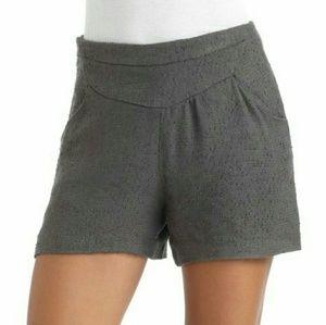 W118 by Walter Baker Pants - NWT WALTER BAKER   High-Waisted Shorts