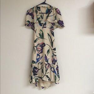 corey lynn calter Dresses & Skirts - Corey Lynn Calter Anthropologie silk dress, 6