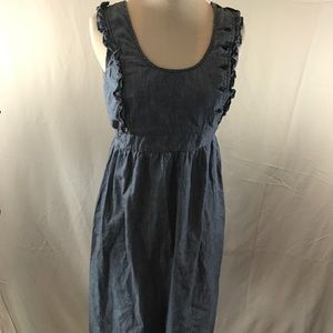 Arizona Denim Dress
