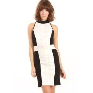 sugarlips Dresses & Skirts - NWT Sugarlips Black and White High Neck Dress L
