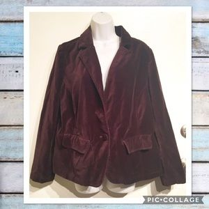 Avenue Jackets & Blazers - Avenue Blues Plus Size Brown Velvet Blazer Jacket