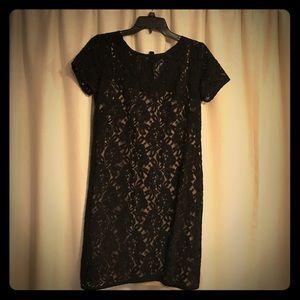 Ann Taylor Loft Black Lace Dress