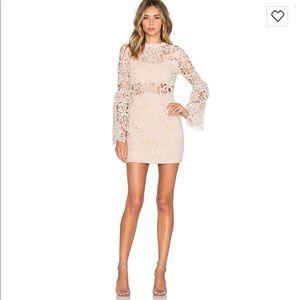 Edless Rose lace mini dress