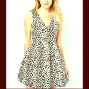 Oasis Leopard Print Skater Dress