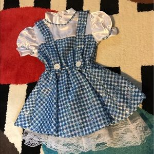 Other - Dorothy costume - sparkly!