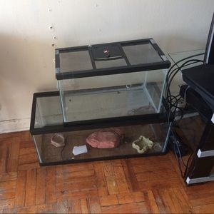 Animal Other - Two tanks a heating rock 2 water bowl