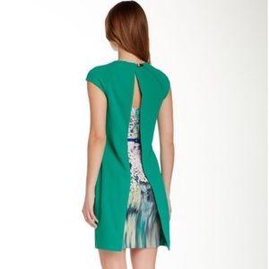 NWT Ted Baker London Dress