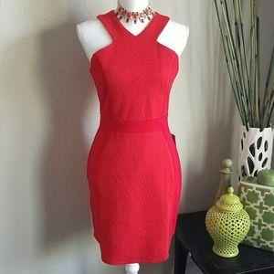 Adelyn Rae Dresses & Skirts - ⬇PRICE DROP⬇ Adelyn Rae Body-Con dress