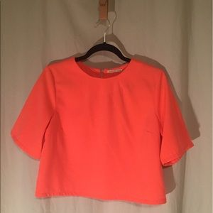 Cropped Mustard Seed top