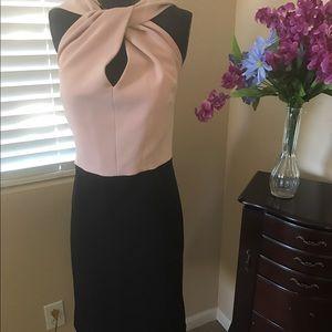 MYNT 1792 Dresses & Skirts - Mynt 1792 Tan & Black classy Dress 16 W