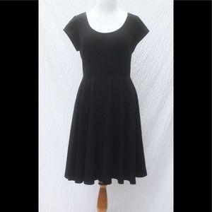 eshakti Dresses & Skirts - New Eshakti Black Fit & Flare Dress 18W