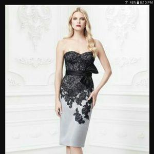 Zac Posen Dresses & Skirts - Zac Posen Occasion Dress