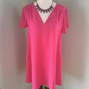 Lush Dresses & Skirts - Gorgeous Fuschia pink shift dress with pockets