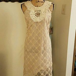 Muse  Dresses & Skirts - Muse Lace Dress