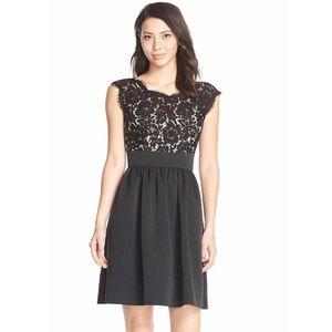 Eliza J Dresses & Skirts - Eliza J Black Lace and Faille Dress