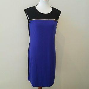 NWT Calvin Klein shift dress 10 ⚘