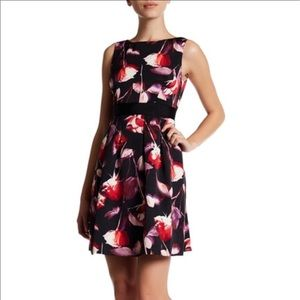 NWT! Adrianna Papell Red Multi Fit & Flare Dress