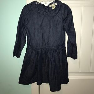 Anthem of the Ants Other - Boutique girls denim dress