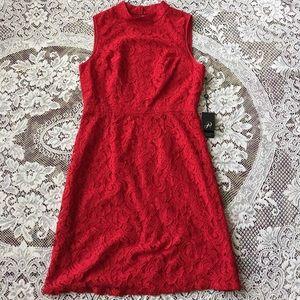 Adrianna Papell A-Line Mock Neck Juliet Lace Dress
