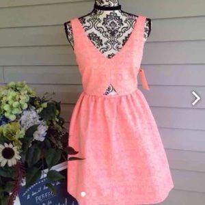 Zara Peaches & Cream Skater Dress