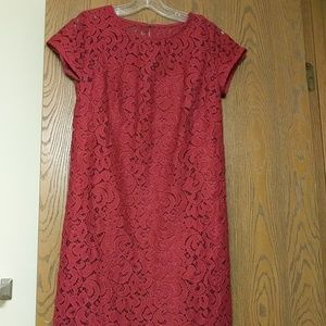 Loft ss lace dress