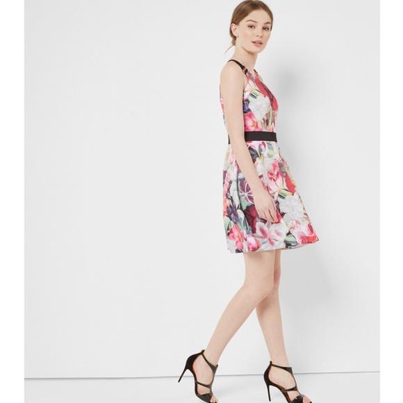 99bc5d319b1 Ted Baker Samra Floral Swirl Skater Dress