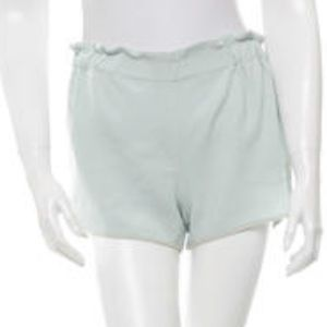 A.L.C. Pants - A.L.C. Mint Paperbag Track Shorts!