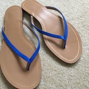 Banana Republic bright blue leather sandals Sz 7